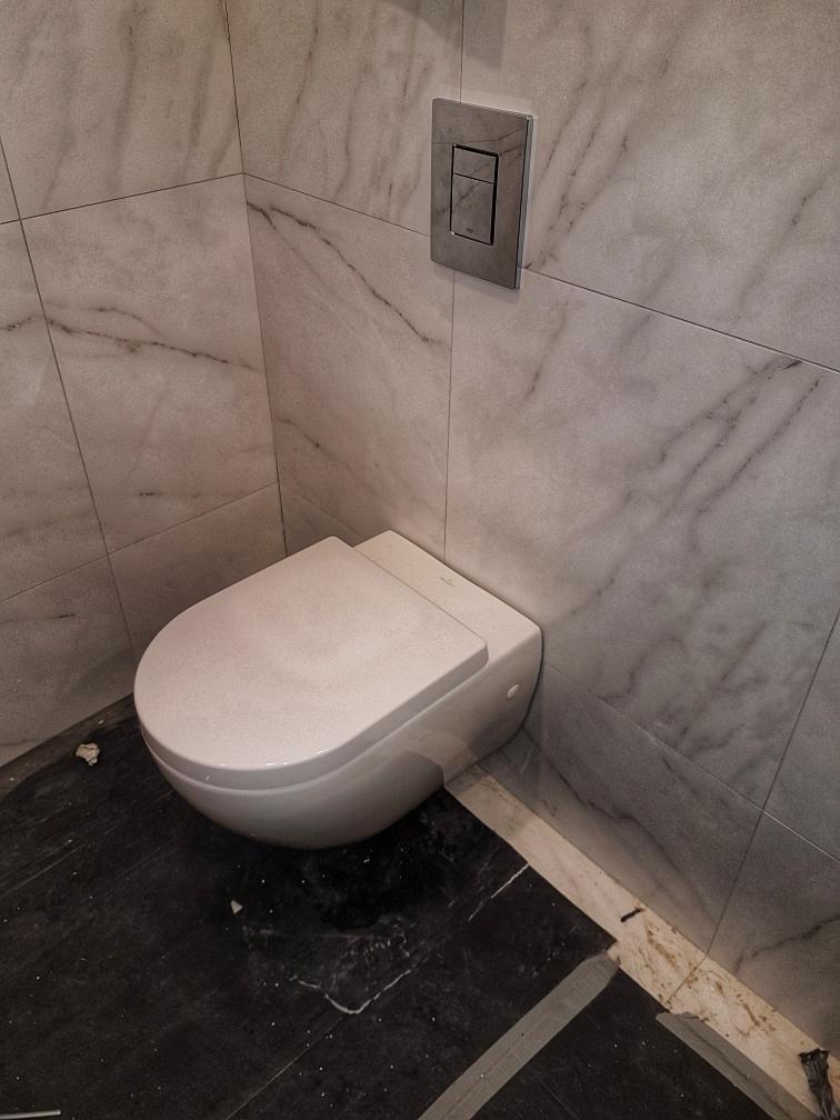 toilet dylsal plumbing